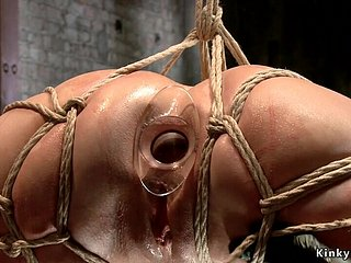 Hogtied slave assfucking toyed plus nailed